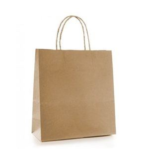 Paper Handle Bags 10''x5''x13''